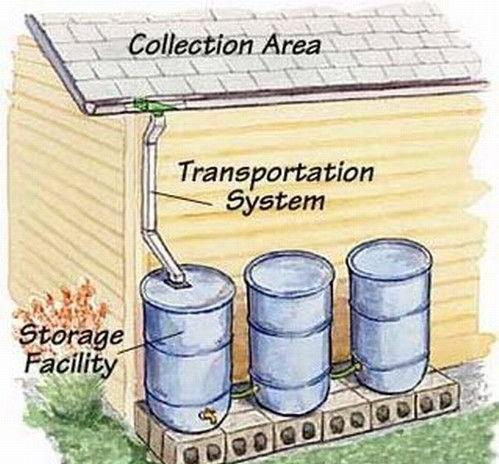 Rainwater Harvesting Images
